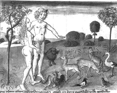 Köthener Historienbibel, 15. Jh. (Georg Hs. 7b. 2°)